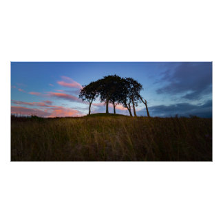 Copt Hill, Houghton le Spring, Poster/Print Poster