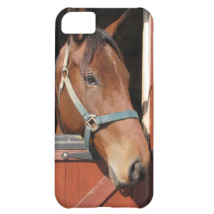 coque iphone xr poney