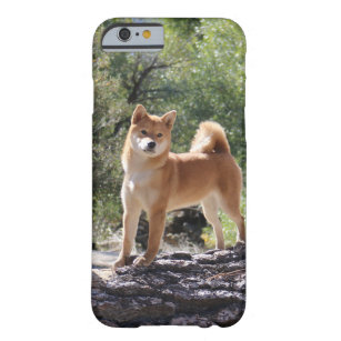 Coques & Protections Shiba Inu pour iPhones | Zazzle.ca