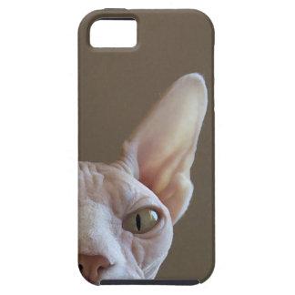 Coque iphone chauve de chat de Sphynx Étui iPhone 5