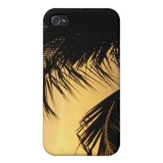 Coque iphone de coucher du soleil de palmier coque iPhone 4/4S