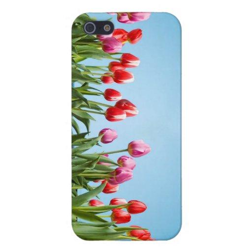 Coque iphone de tulipes de ressort coque iPhone 5