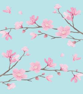 Coques Protections Fleurs Cerisier Japon Pour Iphone 6 Zazzle Ca