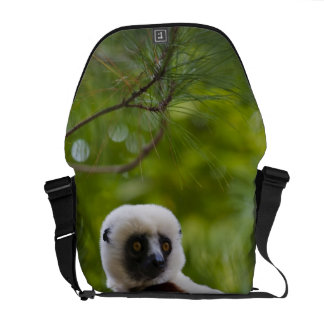 Coquerel's Sifaka in the forest 2 Messenger Bag