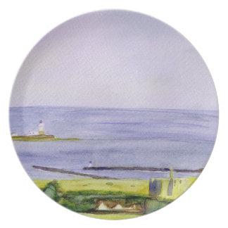 Coquet Island plate