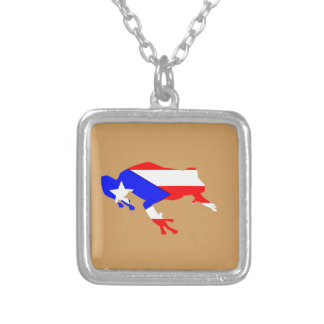 coqui flag silver plated necklace