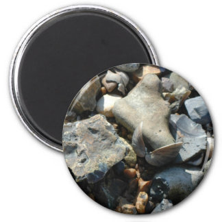 coquillage 3 magnet rond 8 cm