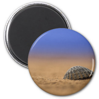 Coquillage Magnet Rond 8 Cm