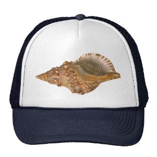 Coquillage vintage de Triton Shell, animal marin Casquettes De Camionneur