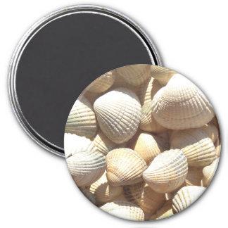 Coquillages collection, magnet de plage d'été magnet rond 7,50 cm
