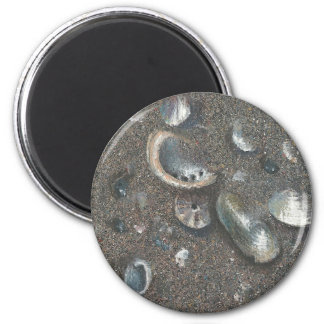 coquillages magnet rond 8 cm