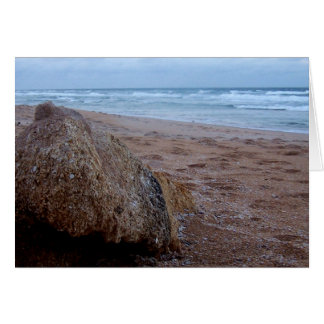 Coquina Rock on Flagler Beach Greeting Cards