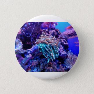 coral-1053837 2 inch round button