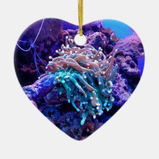 coral-1053837 ceramic ornament