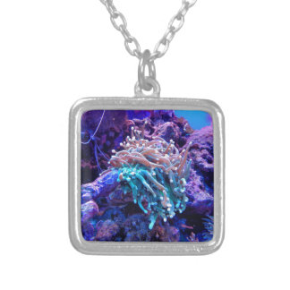 coral-1053837 silver plated necklace