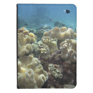 Coral Agincourt Reef Great Barrier Reef Kindle Cover