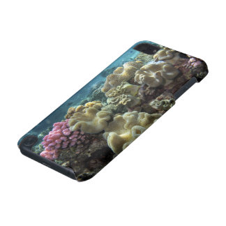 Coral Agincourt Reef Great Barrier Reef iPod Touch (5th Generation) Covers