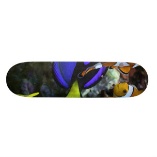 Coral and Fish Skateboards
