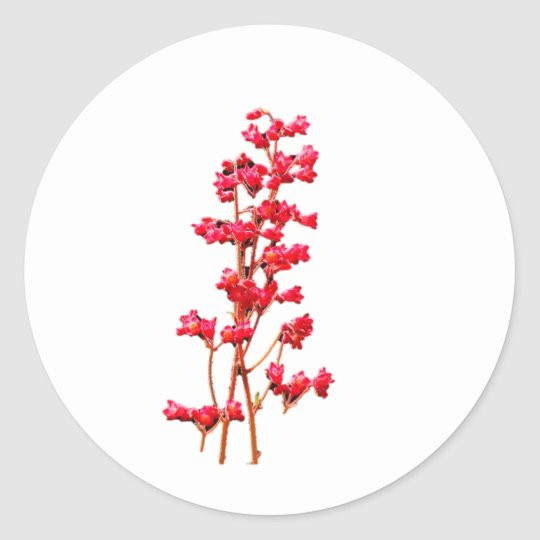 Coral Bell Flowers Sticker
