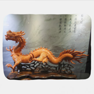 Coral Crafted Dragon Baby Blanket