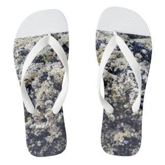Coral flops flip flops