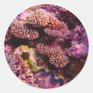 Coral_Garden--part de même 2-0 d'attribution Adhésifs Ronds