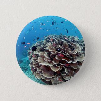 Coral Island 2 Inch Round Button