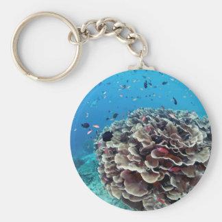 Coral Island Basic Round Button Keychain