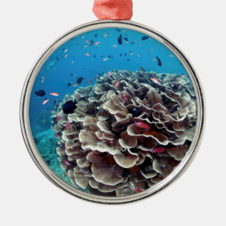 Coral Island Metal Ornament