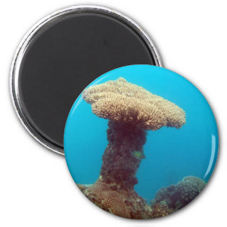 Coral Mushroom Magnet