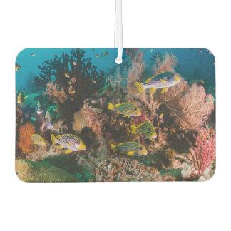 Coral Reef air freshner Air Freshener