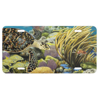 Coral Reef and Hawksbill Sea Turtle license Tag License Plate