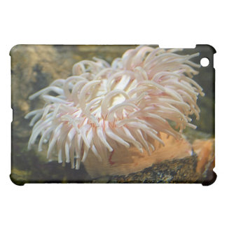 Coral Reef Anemone iPad Case