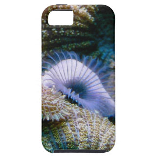 Coral reef iPhone 5 covers