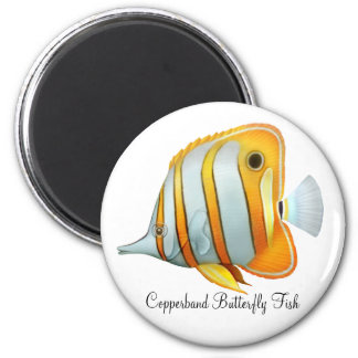 Coral Reef Copperband Butterfly Fish Magnet