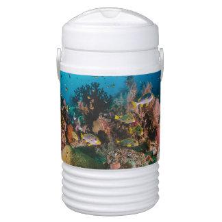 Coral Reef custom monogram beverage coolers Drinks Cooler