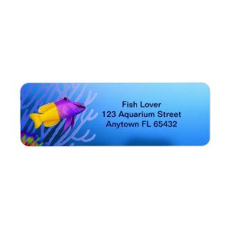 Coral Reef Fairy Basslet Fish Label Return Address Label