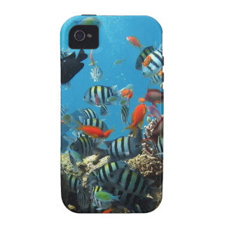 Coral Reef Fish Naturescape Case-Mate iPhone 4 Covers