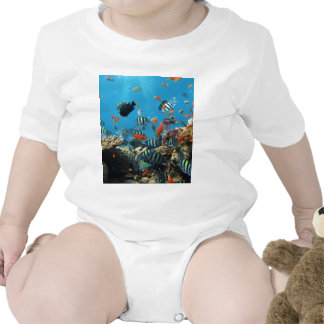 Coral Reef Fish Naturescape Baby Creeper