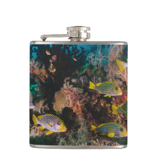 Coral Reef flask