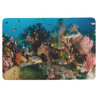 Coral Reef floor mat