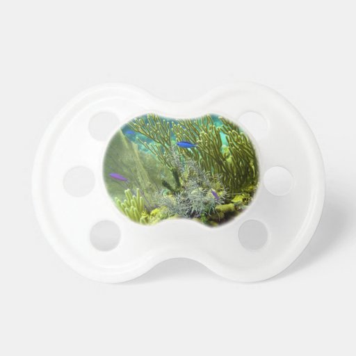 Coral reef pacifier