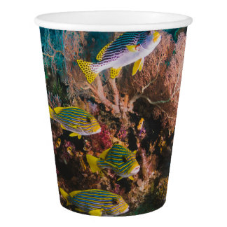 Coral Reef paper cups