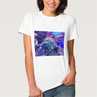 Coral Reef Tees