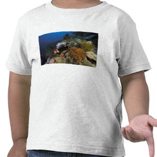 Coral reef. tshirts