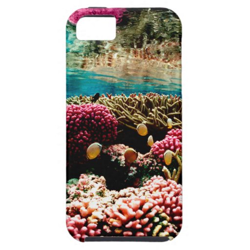 CORAL REEFS 1 iPhone 5 COVERS
