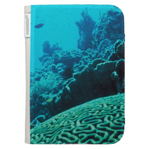 CORAL REEFS 2 KINDLE 3G COVER