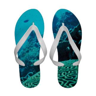 CORAL REEFS 2 Flip-Flops