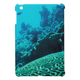 CORAL REEFS 2 CASE FOR THE iPad MINI