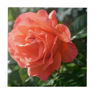 Coral Rose Tile